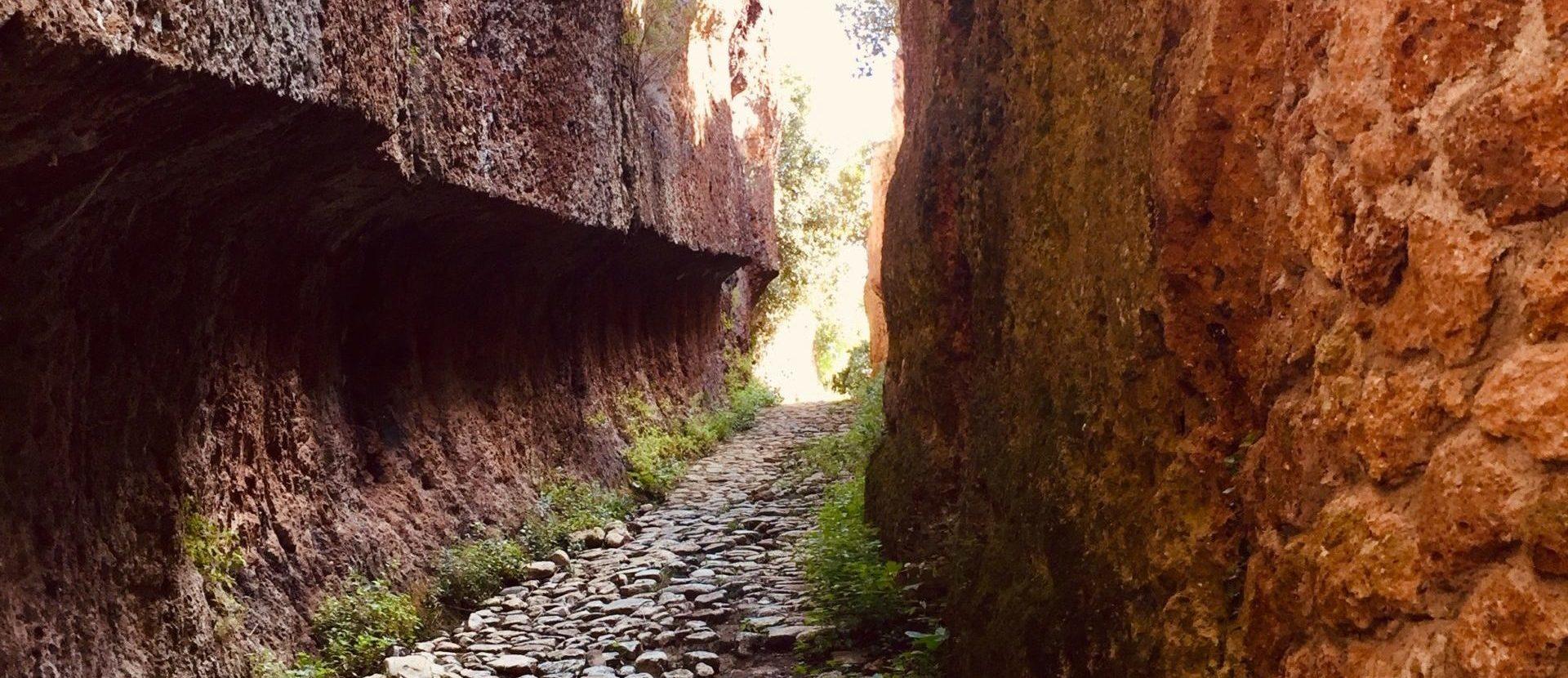 Un' antica via, un piacere moderno AMICI DELLA VIA CLODIA